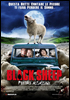 i video del film Black Sheep