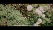 Trailer in versione originale sottotitolata in italiano