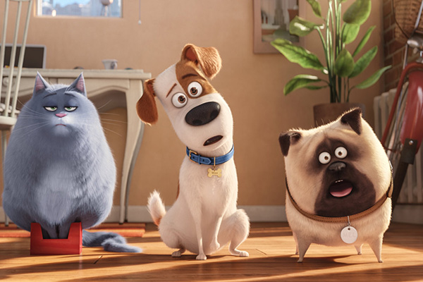 Oggi in TV: Pets - Vita da animali